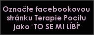 Facebookova stranka Terapie Pocitu